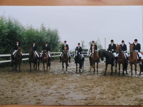 Eerste rijverenigingpaarden